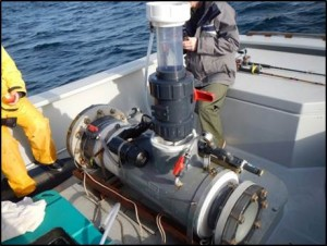 Fish Hyperbaric chamber designed by Joe Welsh at the Monterey Bay Aquairum